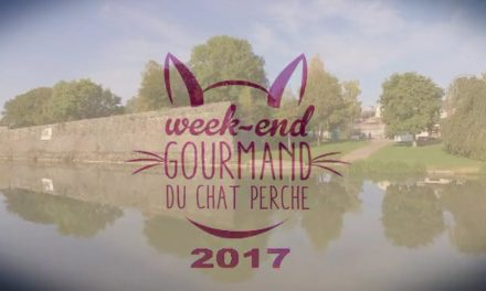 SERIE WEEK END GOURMAND DU CHAT PERCHE 2017 LE FILM  EPISODE 5